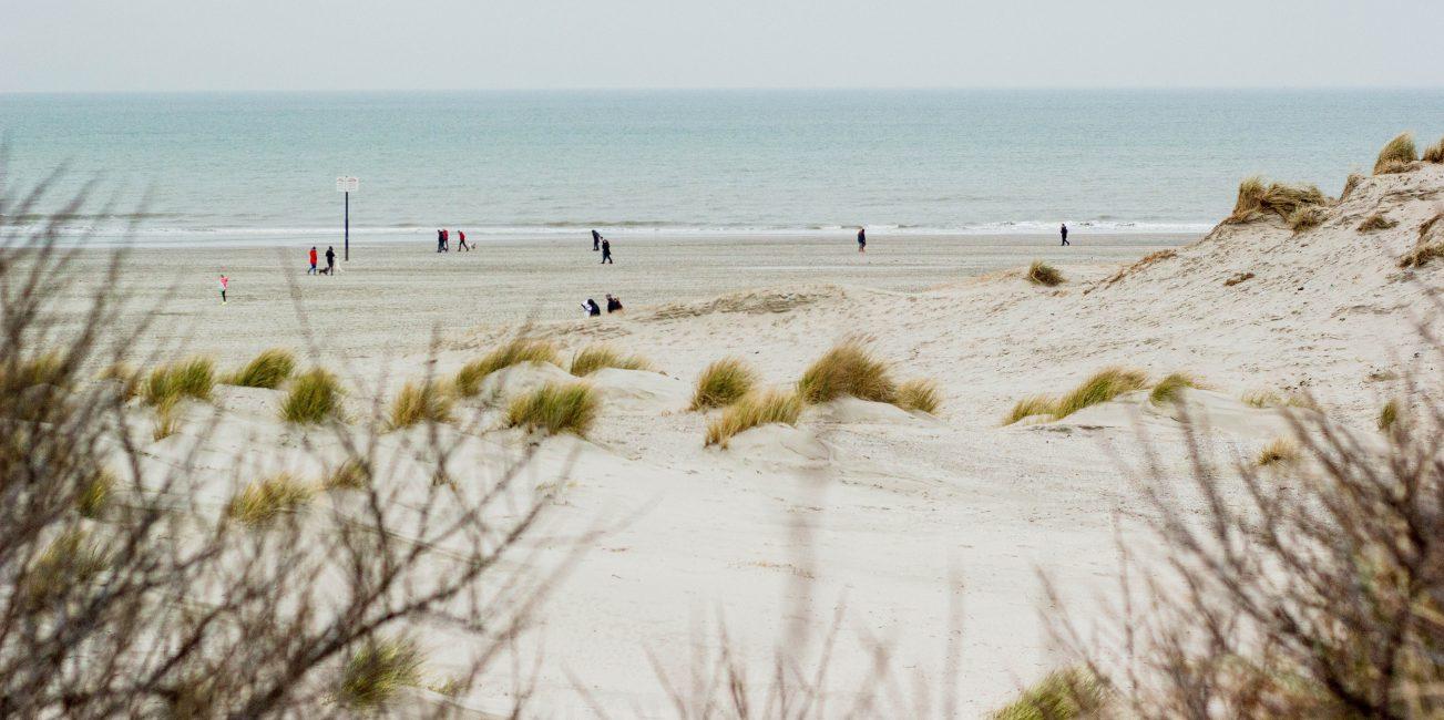 duinen kop van noord-holland